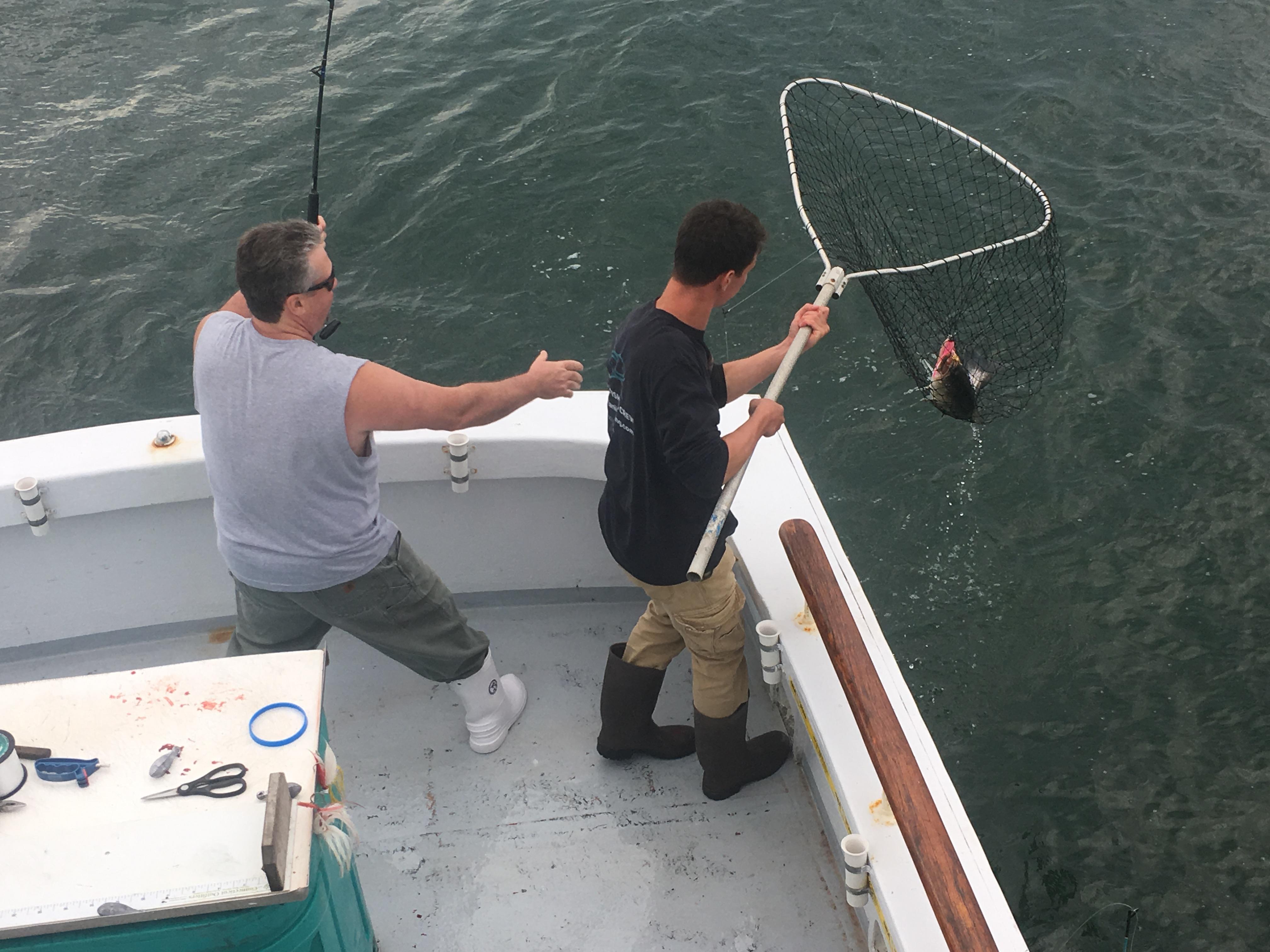 Img 4340 tartan ii fishing for Party boat fishing ct